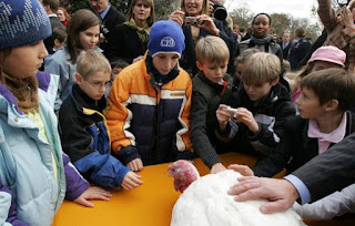President Bush Pardons Pumpkin and Pecan in National Thanksgiving Turkey Ceremony VIDEO PODCAST