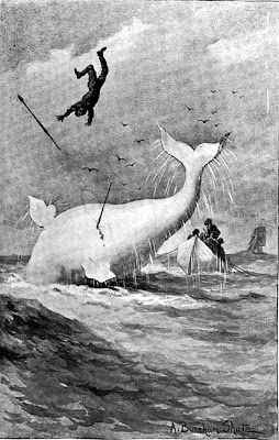 Moby Dick The white whale