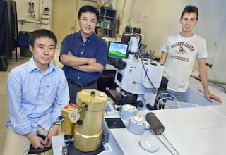 Xiang Zhang, Yongmin Liu and Thomas Zentgraf