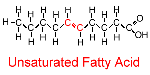 Unsaturated Fatty Acid Molecule Chemistry in My...