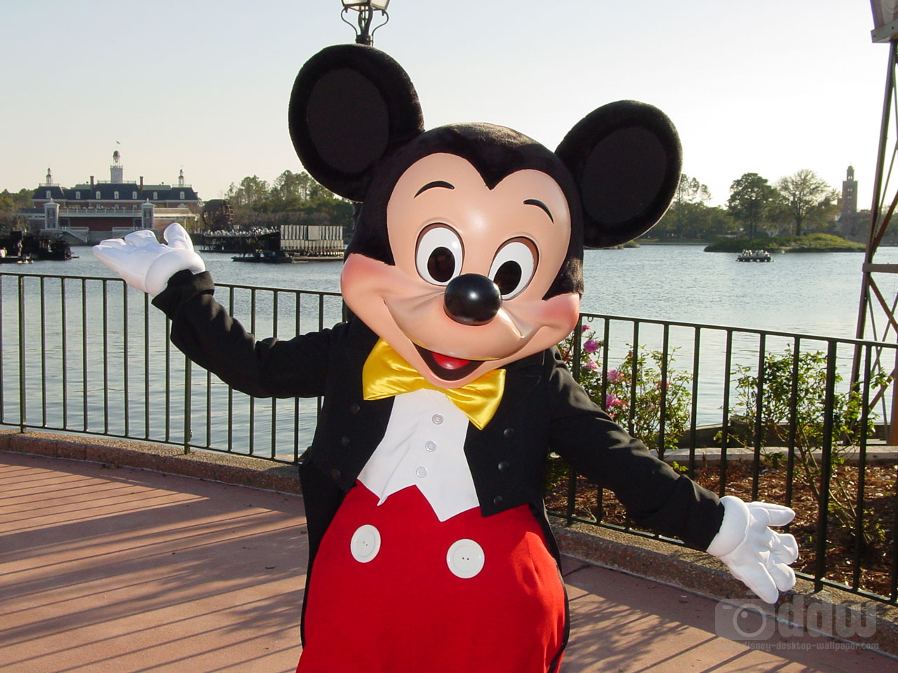 La vida es cuento: LA ILUSIN DE MICKEY MOUSE