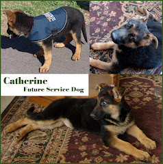 Future Service Dog