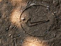 Logo de Nike, detalle de una foto de Heliosphan