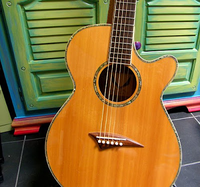 jenelles guitar