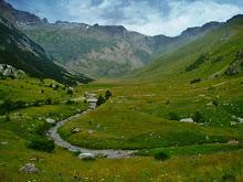 Guia de pesca por el Pirineo aragonés