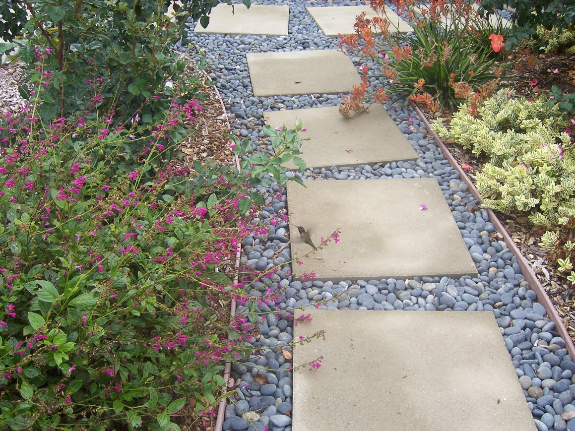 Landscaping With Rocks And Pebbles : Gardener photo stepping stone pathway with mexican beach pebbles