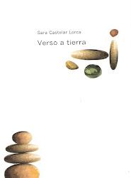 """Mi """"Verso a tierra"""""""