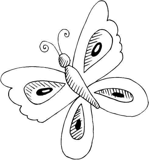 Imagenes de mariposas grandes para imprimir - Imagui