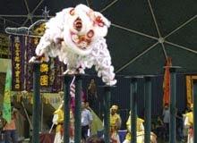 來自麻坡關圣宮A隊的舞獅,在高樁上隨著鼓聲舞出精彩的表演。