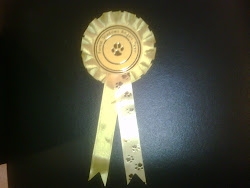 First Clean Run Rosette
