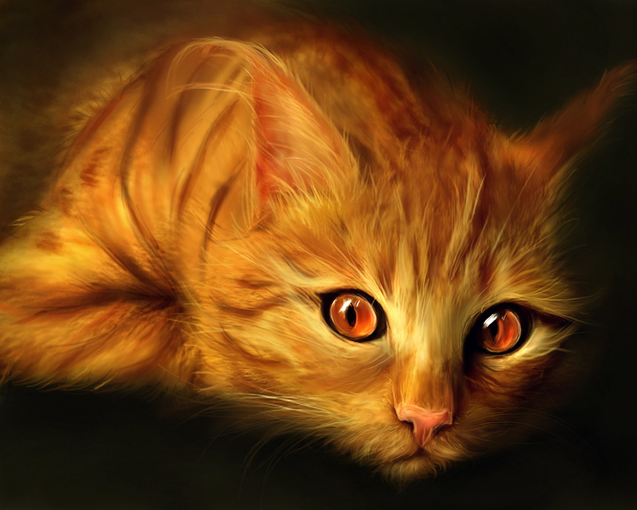 http://2.bp.blogspot.com/_TcklbbvwGGo/S7jmTjwZqgI/AAAAAAAAAAw/GFCb4soBmm8/s1600/red-cat.jpg