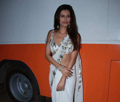 Payal Rohatgi White Saree Pic