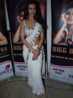 Sexy Payal Rohatgi in White Saree