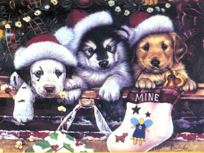 Dogs Funny Christmas Wallpaper