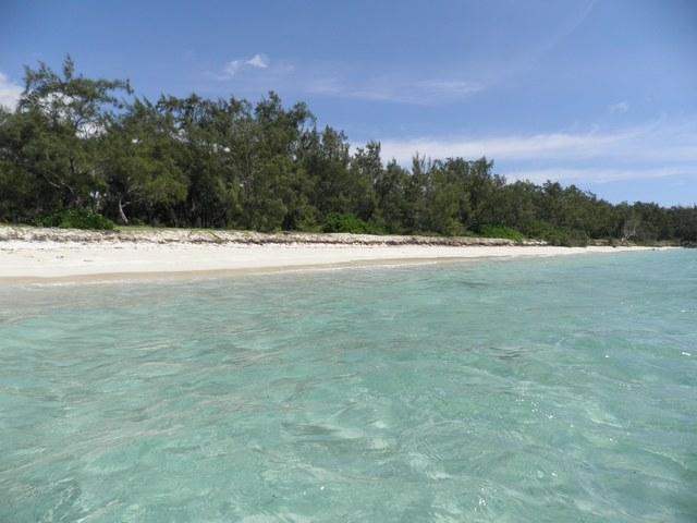 Une plage de rêve à l'Ile aux Cerfs - Ile Maurice
