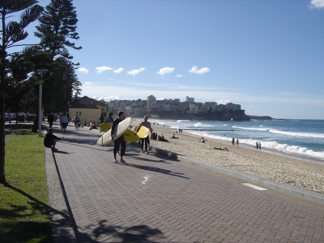 Surfeurs à Manly Sydney