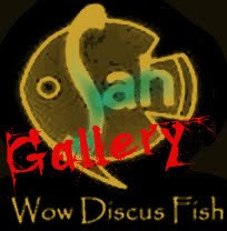 Wow Discus Gallery