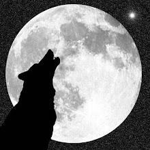 A Bela Lua