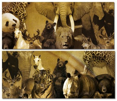 external image animales_mamiferos.jpg