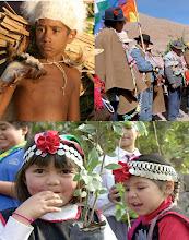 Por los derechos de los estudiantes de los pueblos originarios
