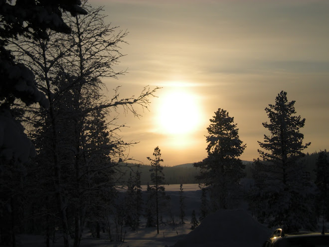 The Sun and Landscape