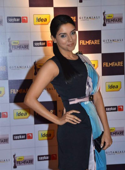 Hot Asin n Raveen at Filmfare Nominations Bash