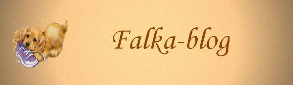 Falka-blog