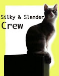 Silky and Slender Crew