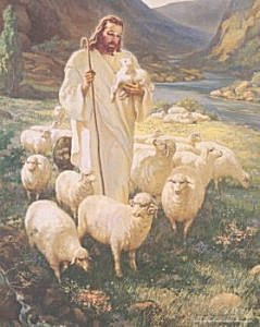 Image result for Chief Shepherd 1 Peter 5 4