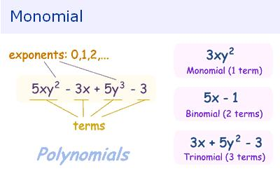Monomial | Choose Online Math Guide
