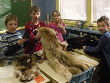 Atelier en classe- Jeudi 3 février 2011
