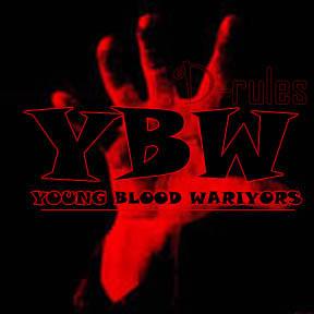 YBW BLOG