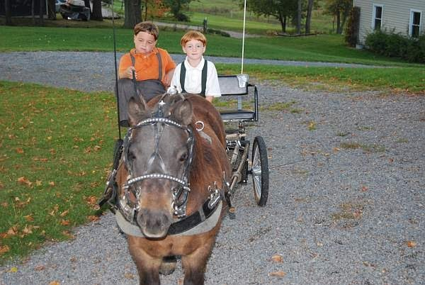 Places to stay at amish country ohio 2015 home design ideas for Amish country things to do