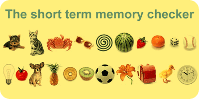The short term memory checker