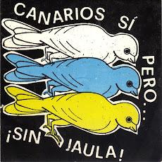 CANARIOS SI PERO ¡SIN JAULA!