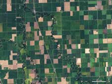 On September 10, 2009, Landsat scanned this image of farmland across northwest Minn., including a view of Noreen Thomas' organic farm on the banks of the Buffalo River near the middle of the image