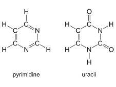 The molecular structures of pyrimidine and uracil