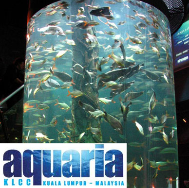 Budget Hotel in Kuala lumpur: Aquaria KLCC