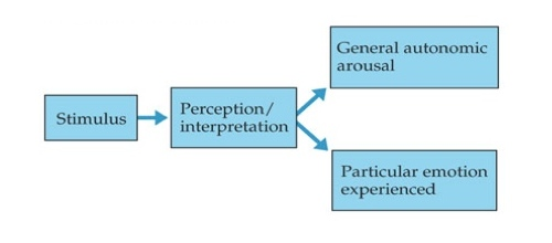 discuss one or more theories of Ior change, describe the key variables of behavior change models, and to  explore  figure 1 social cognitive theory model  hence better development  results.