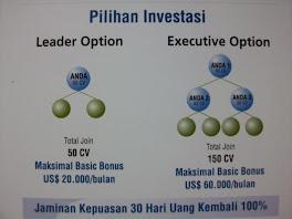 Pilihan Investasi