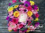 Blume Link
