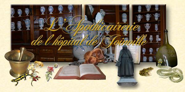 L'apothicairerie de Joinville