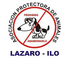 Asociación Protectora de Animales Lazaro Ilo