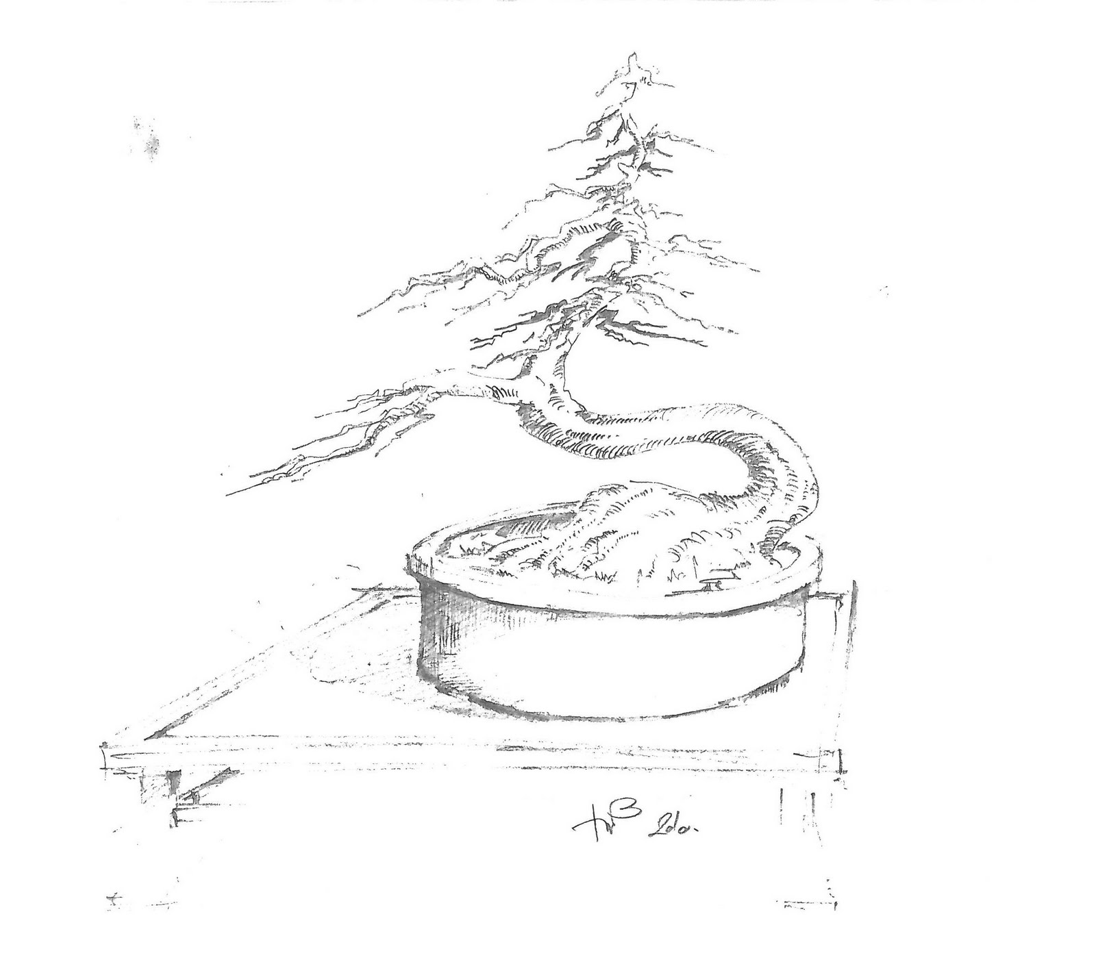 bonsai lounge  virtual workshop