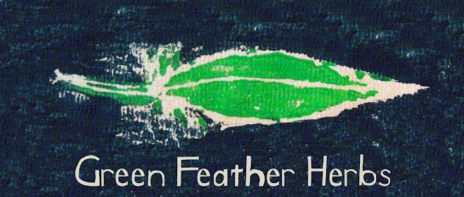 Green Feather Herbs