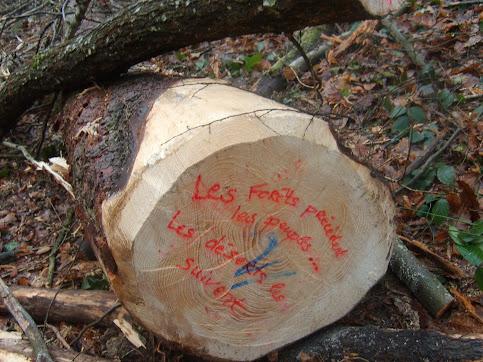 Les Forêts précèdent les peuples...;Les Déserts les suivent...!
