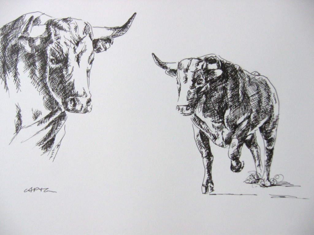 C a p t o n dessin de toros - Dessin de toro ...