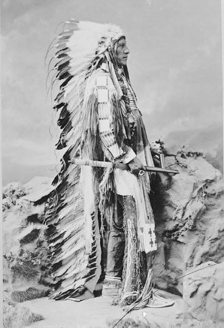 American Horse 1877