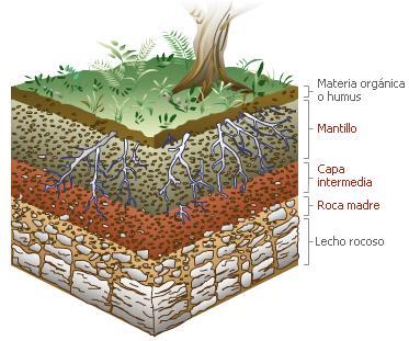 Educaci n ambiental acasin tema 3 el suelo agua y aire for Recurso clausula suelo