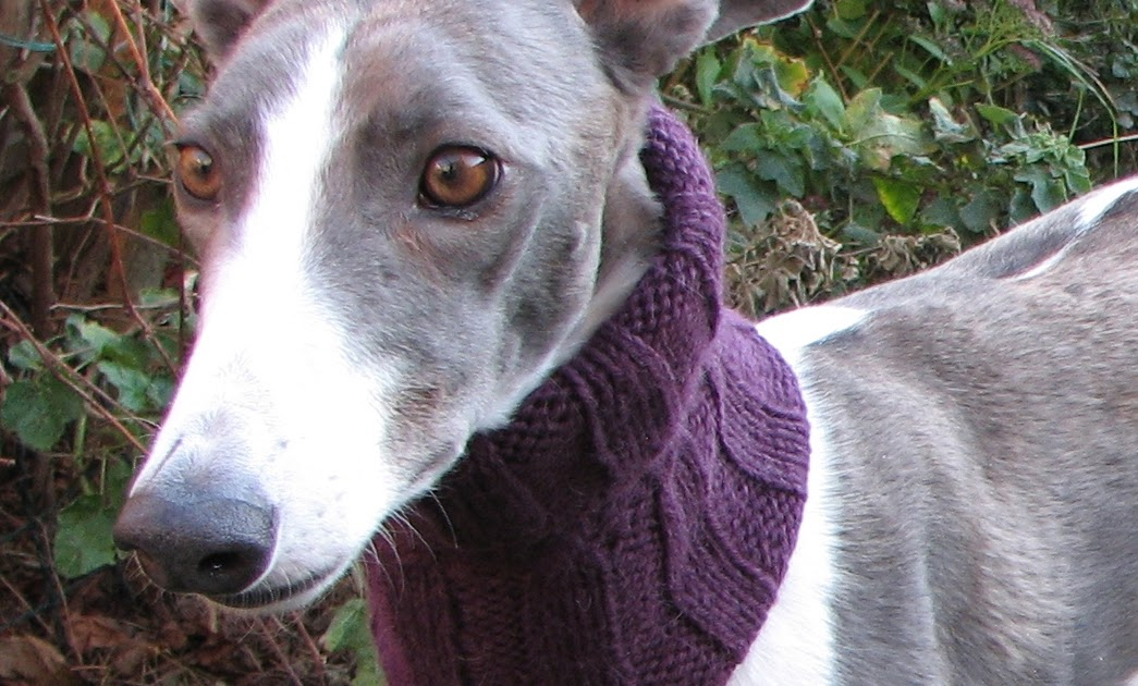 Gorgeous Greyhounds: Knitting Patterns for Charity